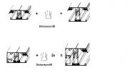 ALWO Iso-Distanzprofil 15 mm für 32 mm SP